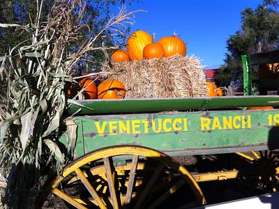 Venetucci Farms LexisNexis 10.4.13